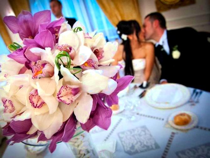 Matrimonio Tema Orchidee : Orchidee i fiori per il matrimonio sposarsi in calabria